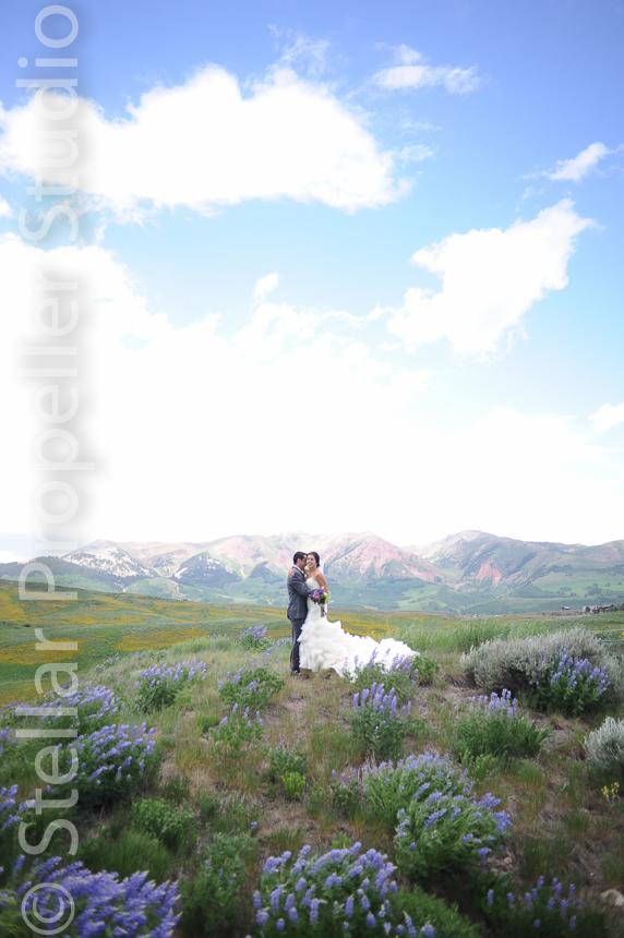 mywedding.com best of awards wedding photography